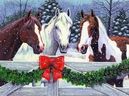 Sunday December 16th  - Unaffiliated Christmas Showjumping